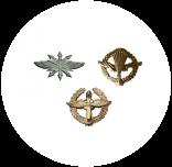 Эмблемы петличные на погоны