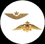 Эмблема на головные уборы (эмблема на тулью, металл)