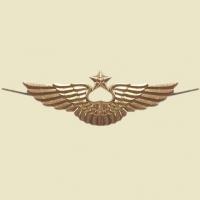 Эмблема на тулью ВКС (ВВС) РФ нового образца