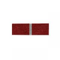 """Орденская планка """"За заслуги перед Отечеством"""" (II степень)"""