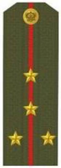 Погоны (капитан)