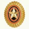 Кокарда малая золотая со звездой нового образца