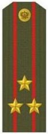 Погоны (полковник)