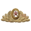 Кокарда металлическая СА генеральская