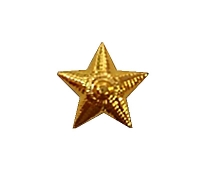 Звезда 13 мм. пластиковая золотая рифленая