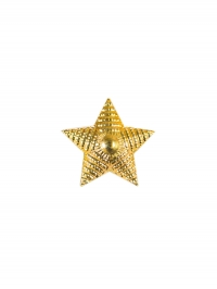 Звезда 20 мм. пластиковая золотая рифленая