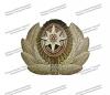 Кокарда металлическая офицерская МЧС, нового образца с розой ветров